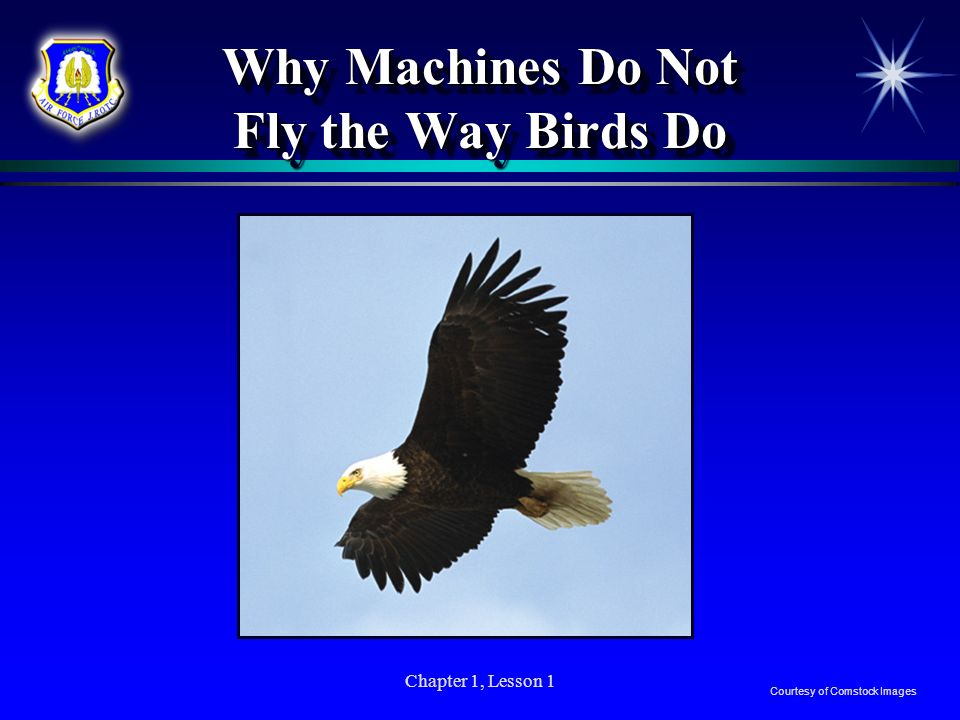 Why Machines Do Not Fly the Way Birds Do