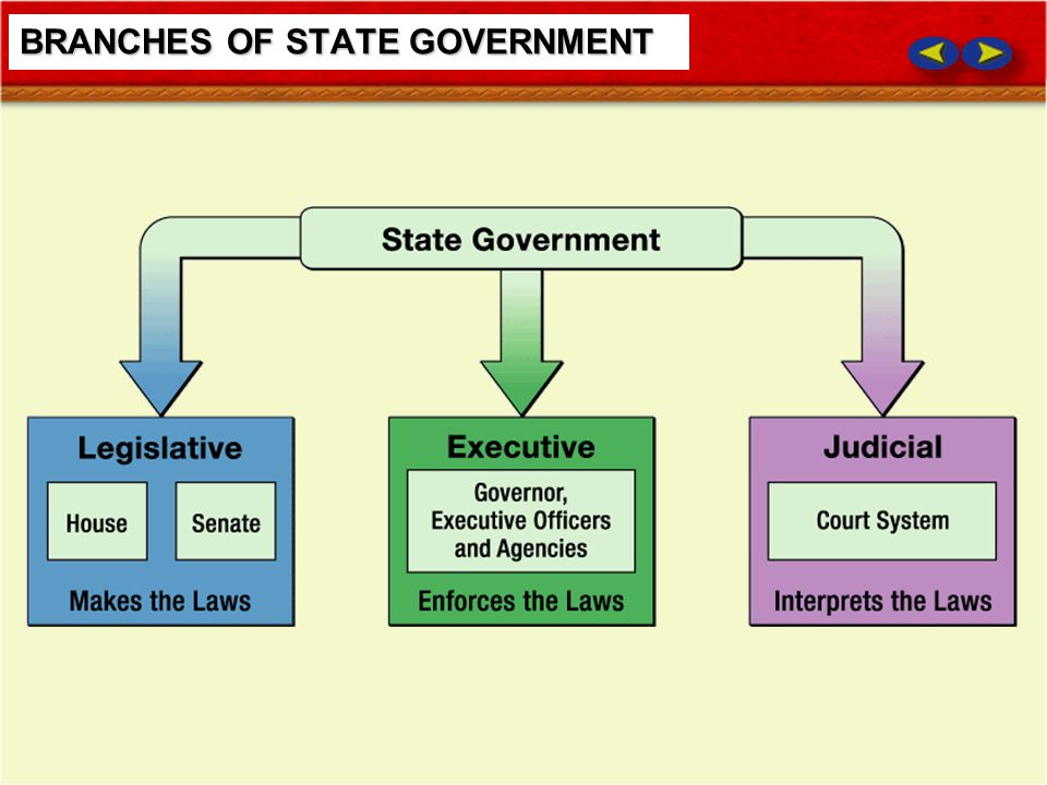 BRANCHES OF STATE GOVERNMENT