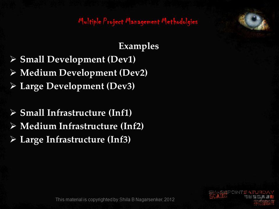 Multiple Project Management Methodolgies