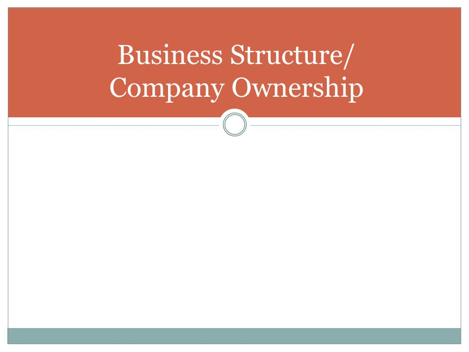 Business Structure/ Company Ownership
