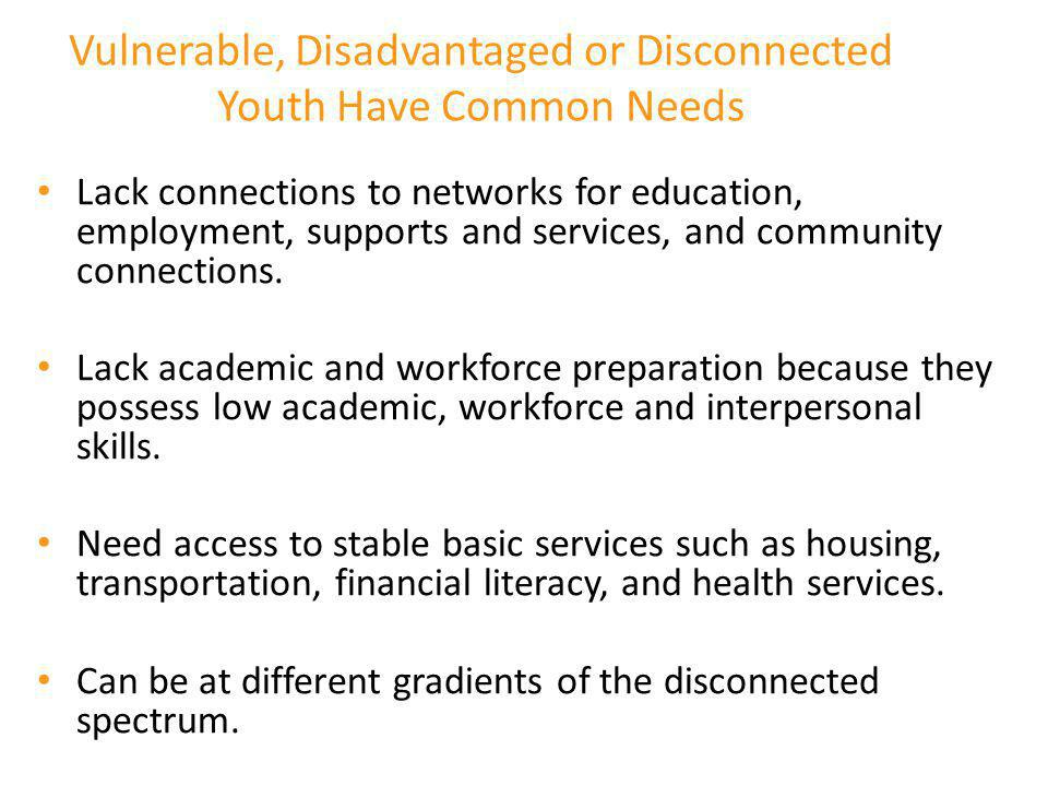 Vulnerable, Disadvantaged or Disconnected Youth Have Common Needs