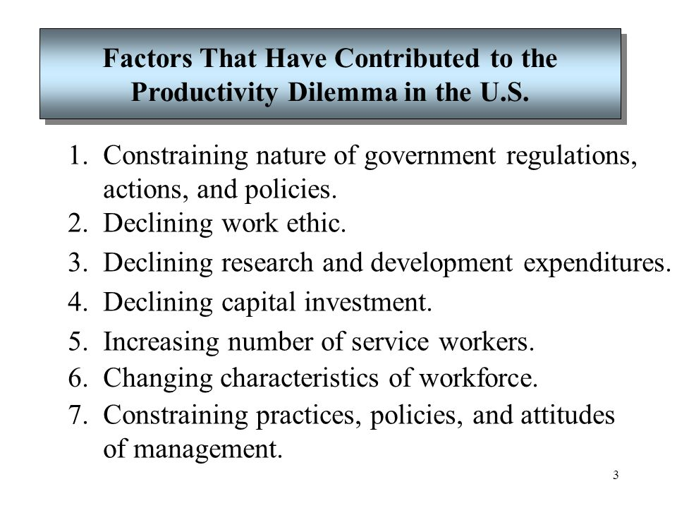 Factors That Have Contributed to the Productivity Dilemma in the U.S.