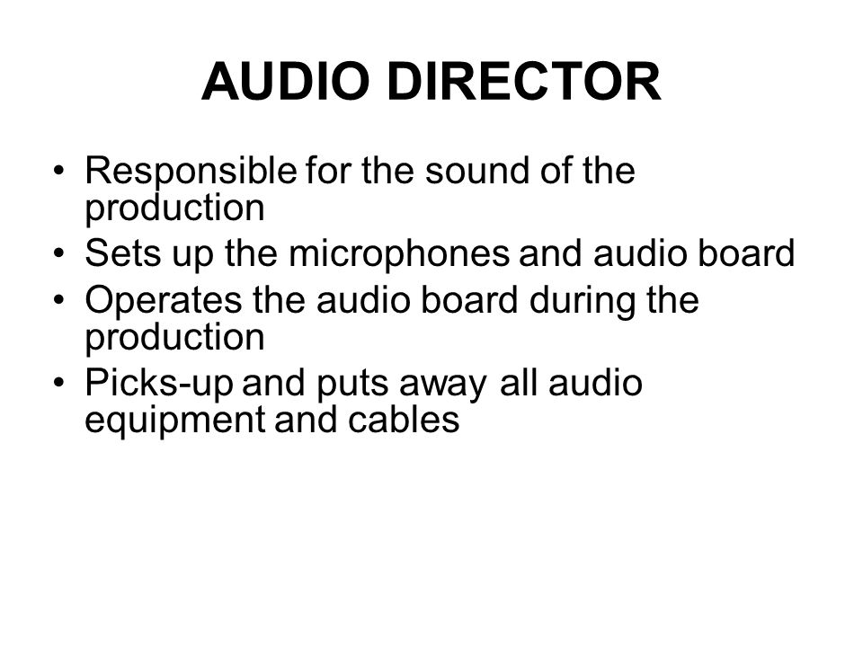 AUDIO DIRECTOR Responsible for the sound of the production
