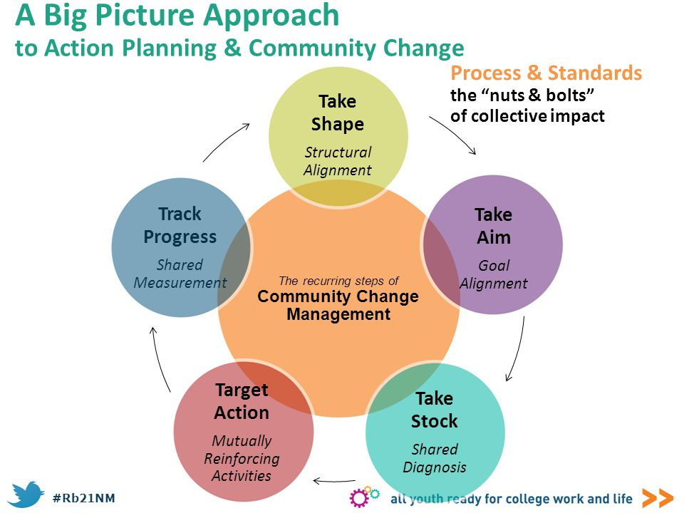 A Big Picture Approach to Action Planning & Community Change