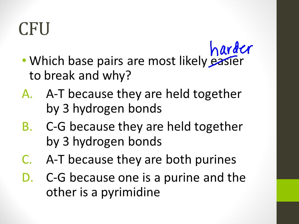 CFU Which base pairs are most likely easier to break and why