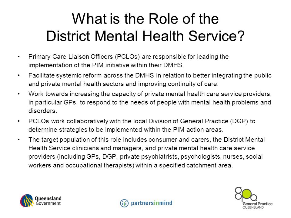 What is the Role of the District Mental Health Service
