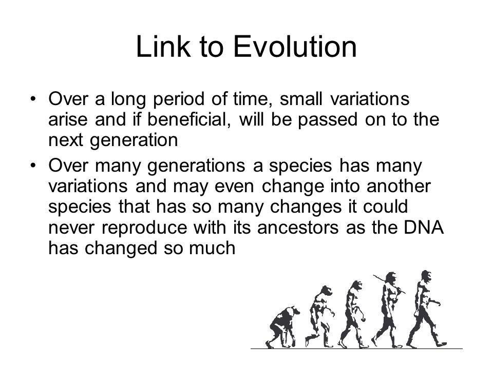 Link to Evolution Over a long period of time, small variations arise and if beneficial, will be passed on to the next generation.