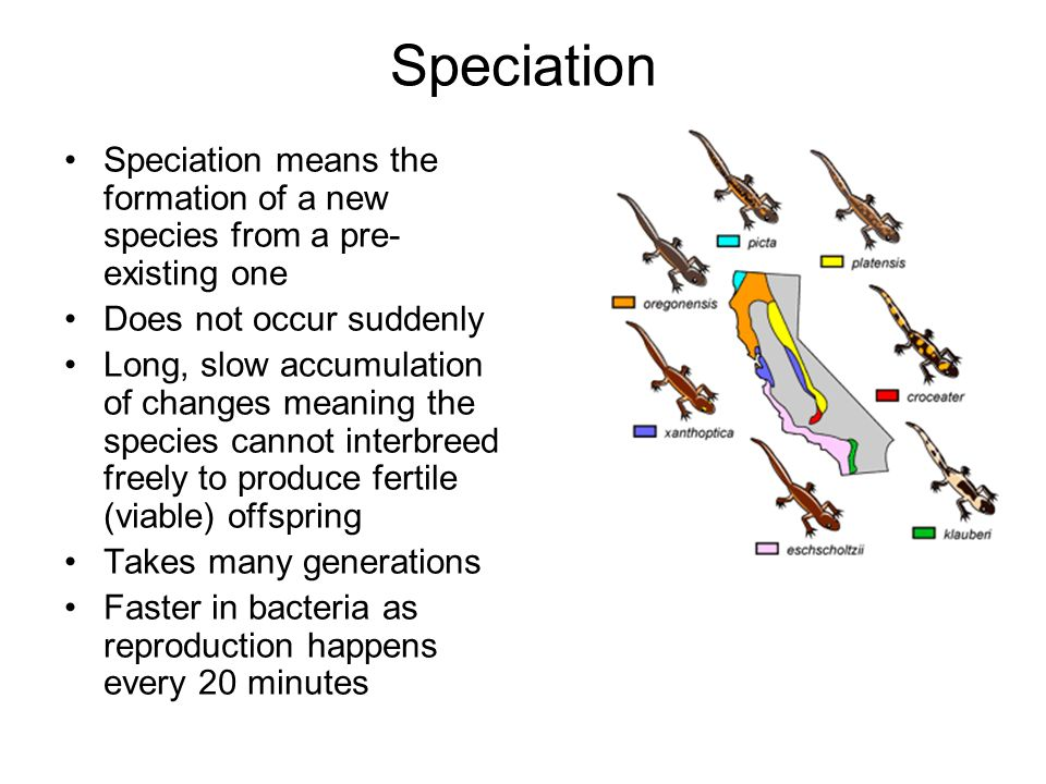 Speciation Speciation means the formation of a new species from a pre-existing one. Does not occur suddenly.