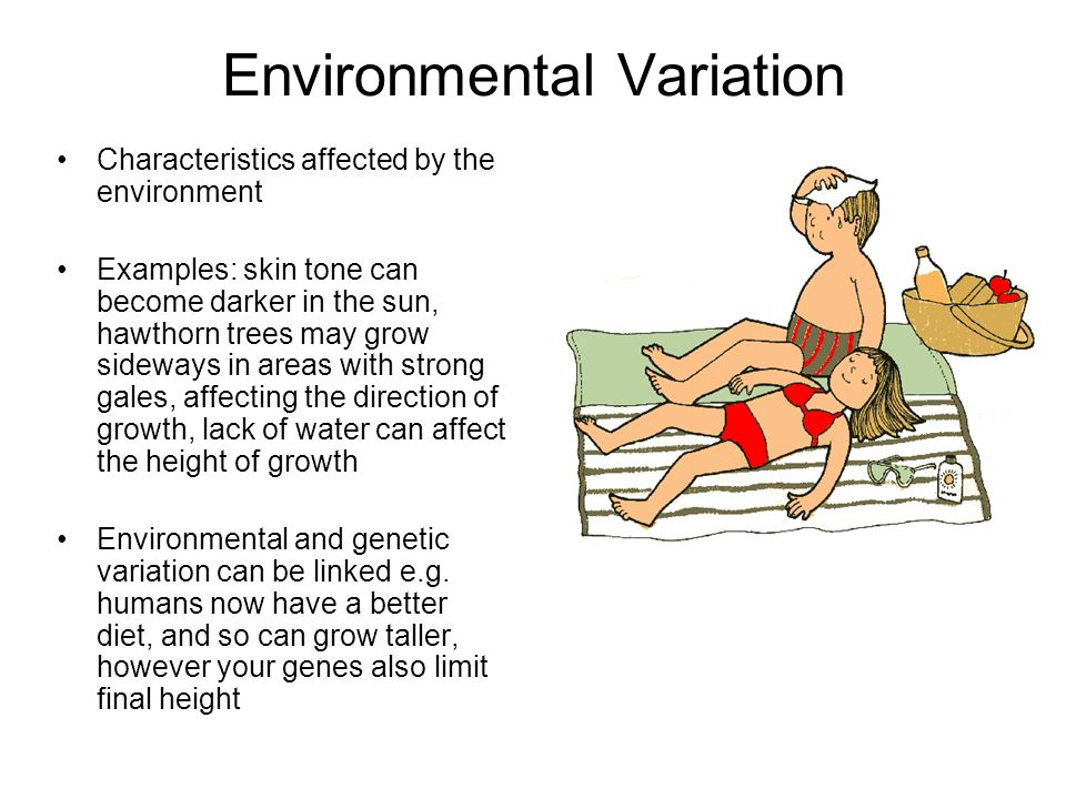 Environmental Variation