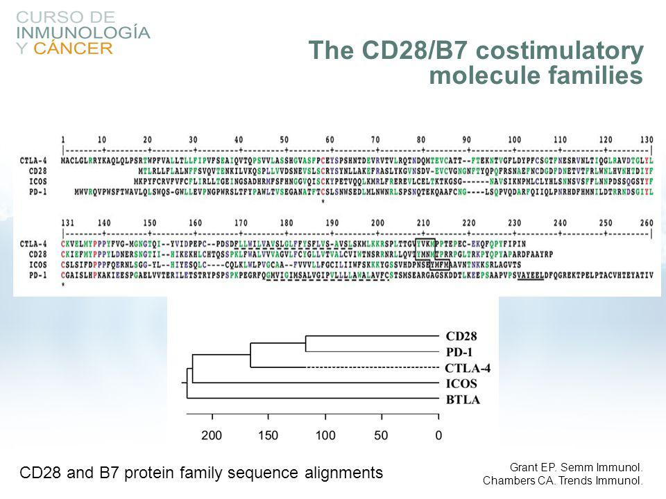 The CD28/B7 costimulatory molecule families