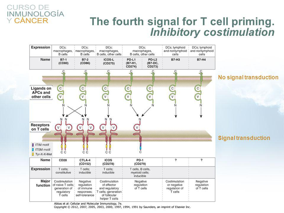 The fourth signal for T cell priming. Inhibitory costimulation