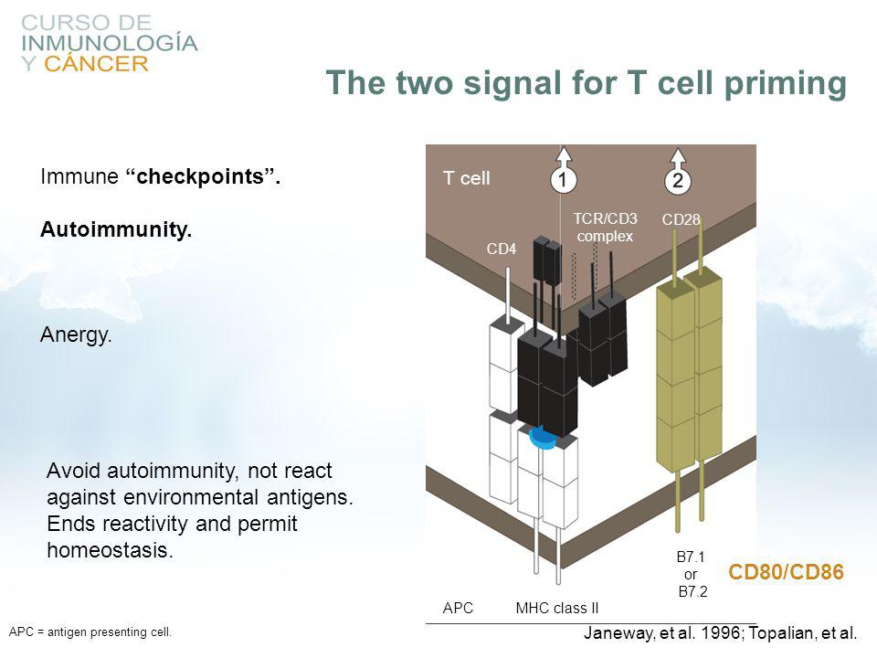 The two signal for T cell priming