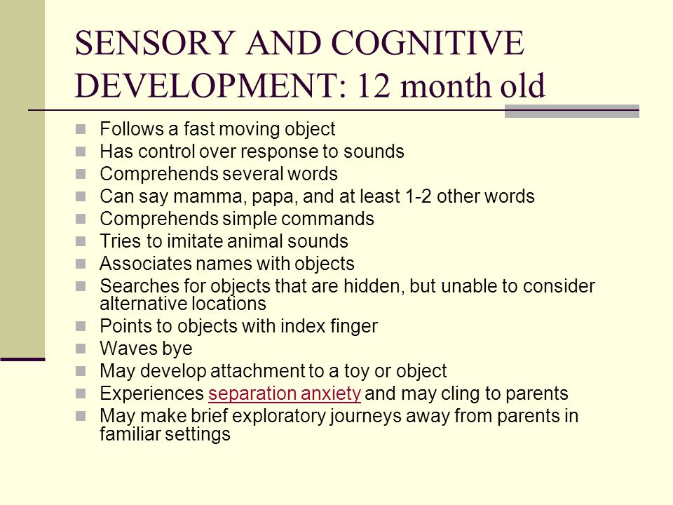 SENSORY AND COGNITIVE DEVELOPMENT: 12 month old