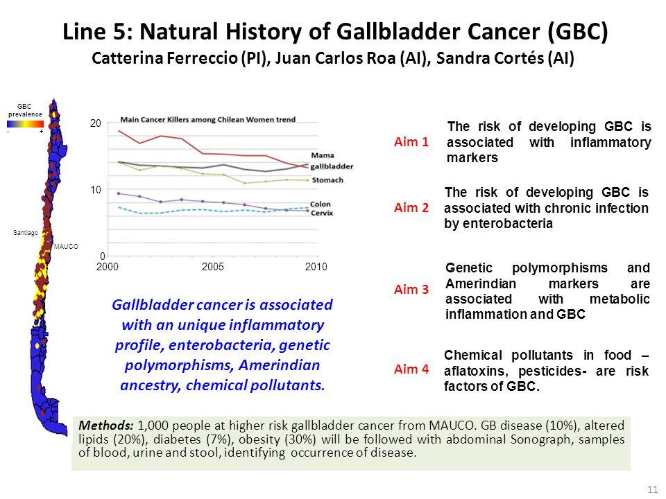 Line 5: Natural History of Gallbladder Cancer (GBC) Catterina Ferreccio (PI), Juan Carlos Roa (AI), Sandra Cortés (AI)
