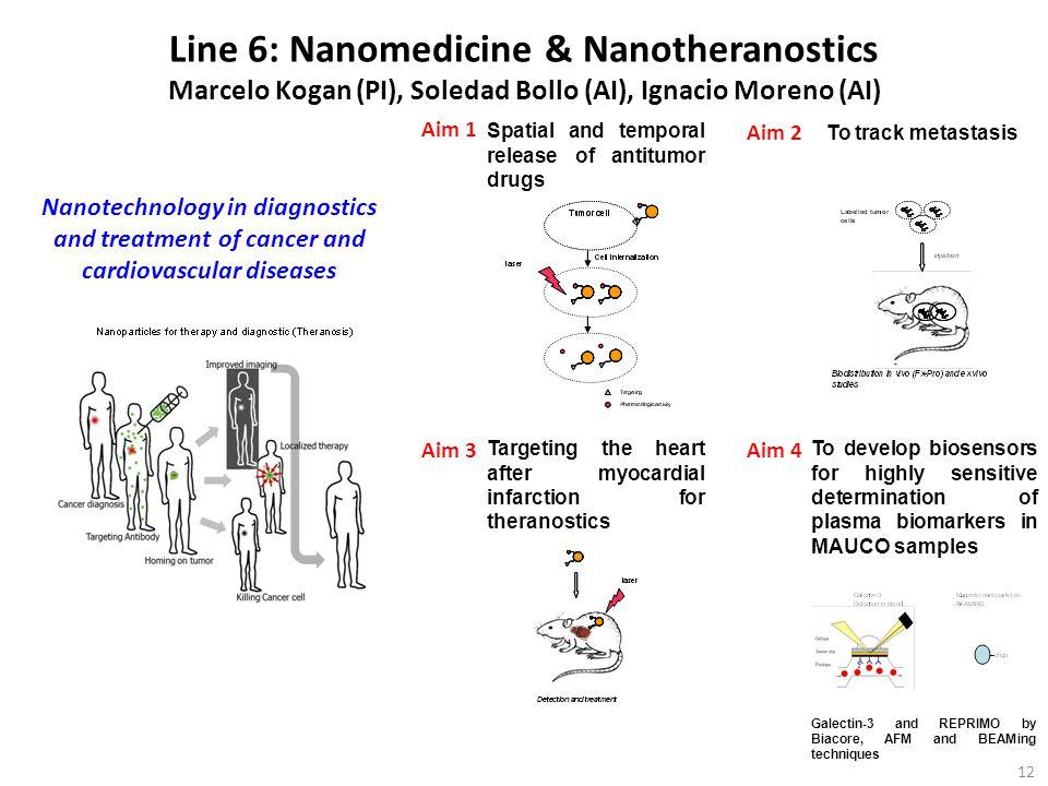 Line 6: Nanomedicine & Nanotheranostics Marcelo Kogan (PI), Soledad Bollo (AI), Ignacio Moreno (AI)