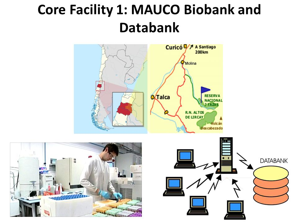 Core Facility 1: MAUCO Biobank and Databank