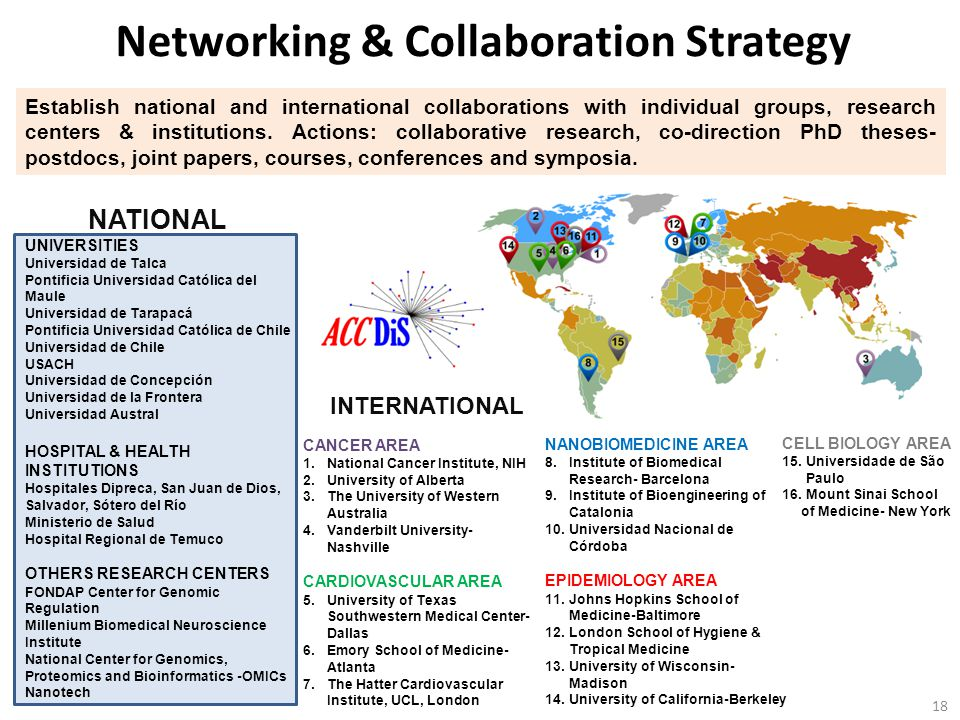 Networking & Collaboration Strategy