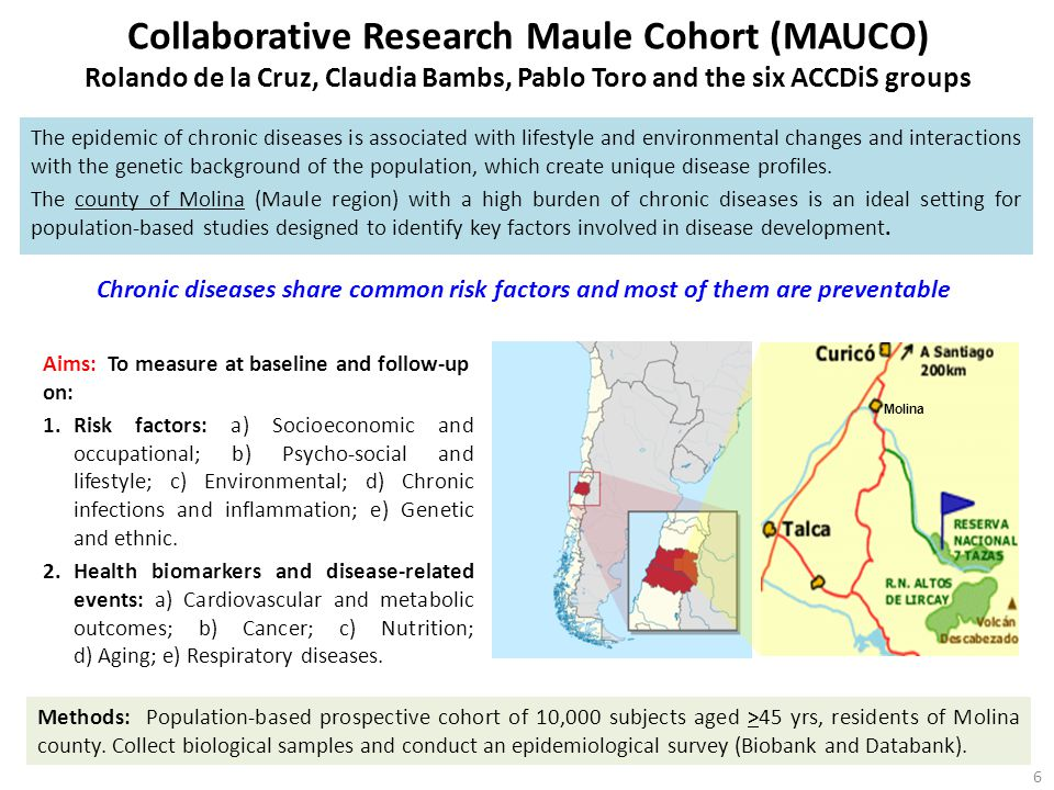 Collaborative Research Maule Cohort (MAUCO) Rolando de la Cruz, Claudia Bambs, Pablo Toro and the six ACCDiS groups