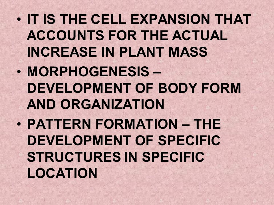 IT IS THE CELL EXPANSION THAT ACCOUNTS FOR THE ACTUAL INCREASE IN PLANT MASS