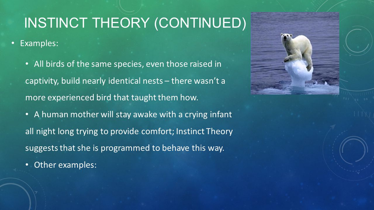Instinct Theory (continued)