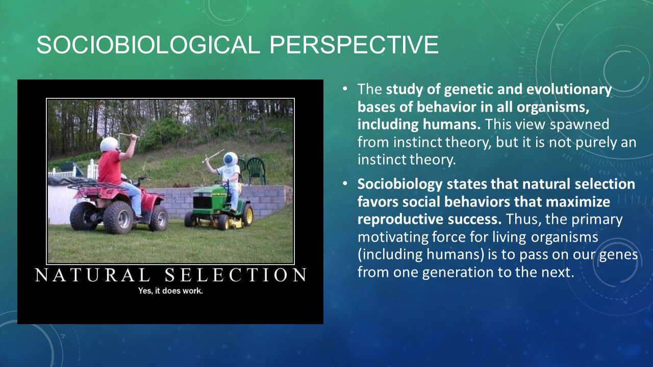 SOCIOBIOLOGICAL PERSPECTIVE