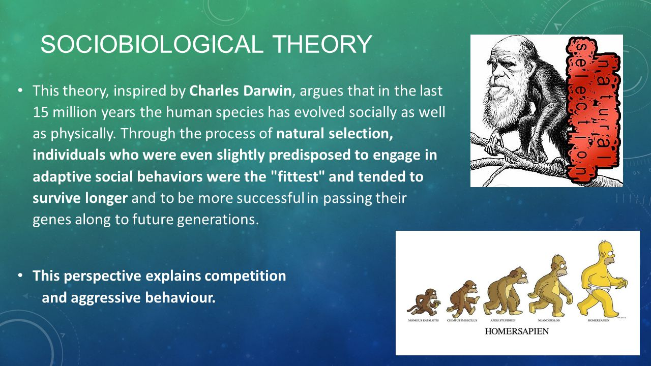Sociobiological Theory