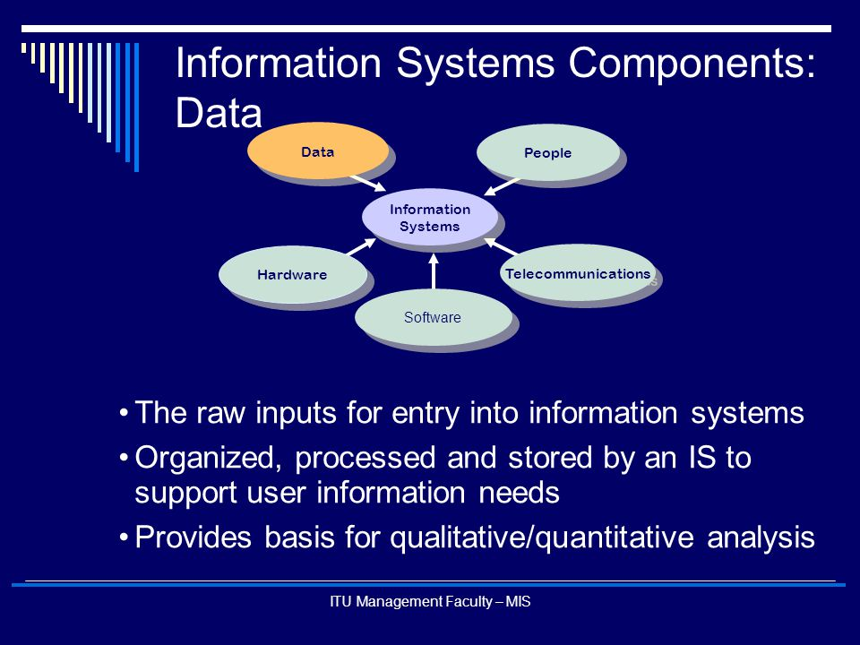 Information Systems Components: Data