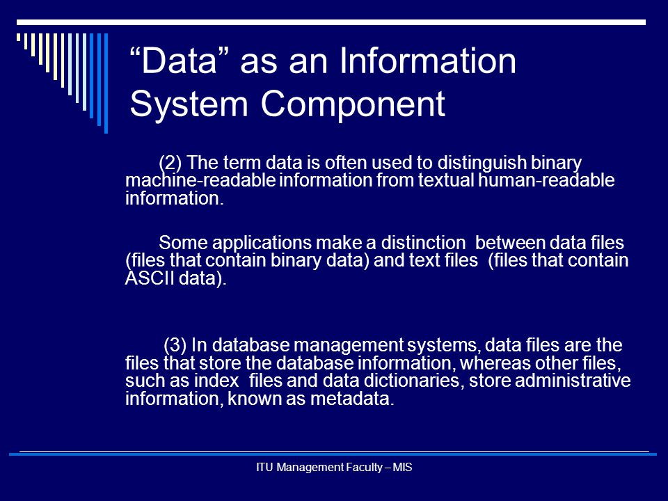 Data as an Information System Component