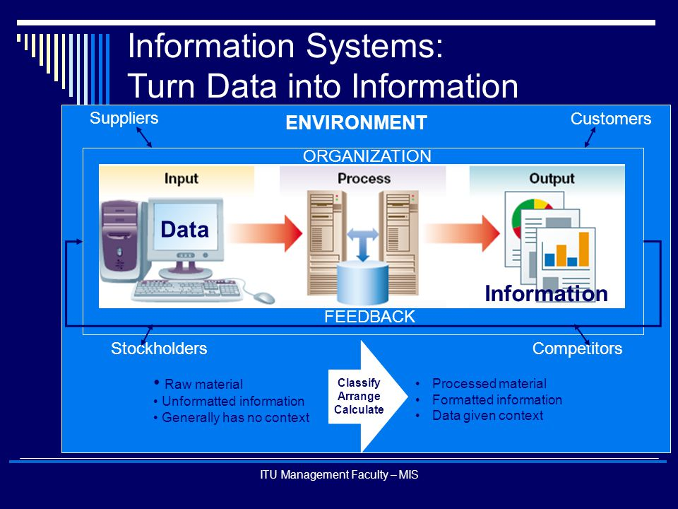 Information Systems: Turn Data into Information