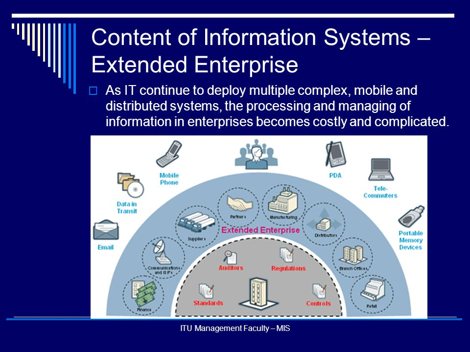Content of Information Systems – Extended Enterprise