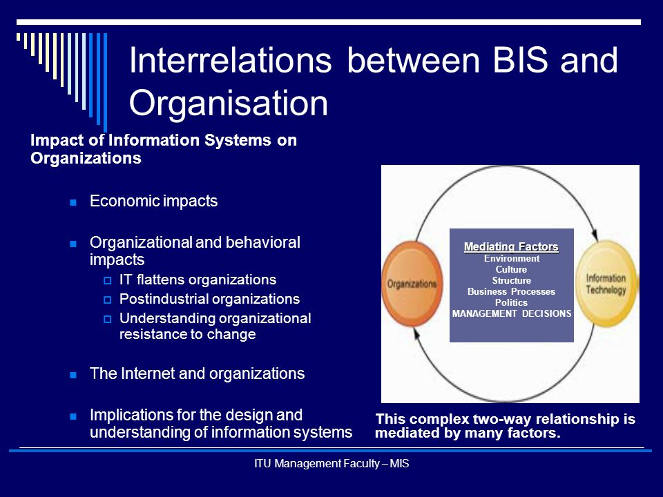 Interrelations between BIS and Organisation