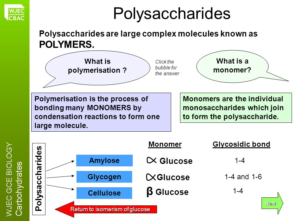 What is polymerisation