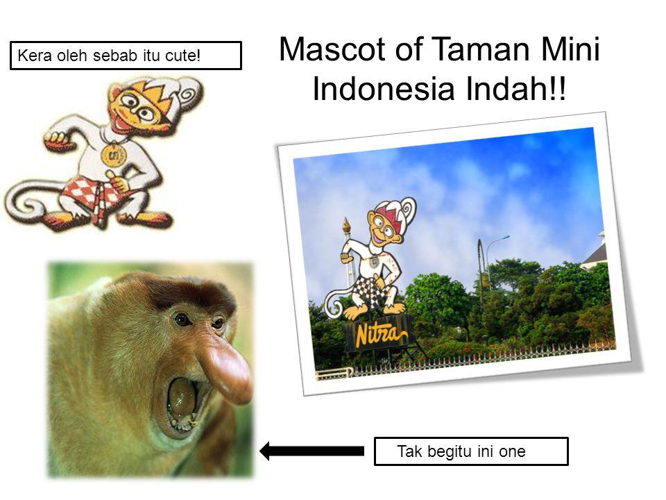 Mascot of Taman Mini Indonesia Indah!!