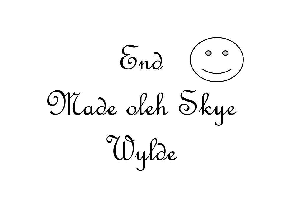 End Made oleh Skye Wylde