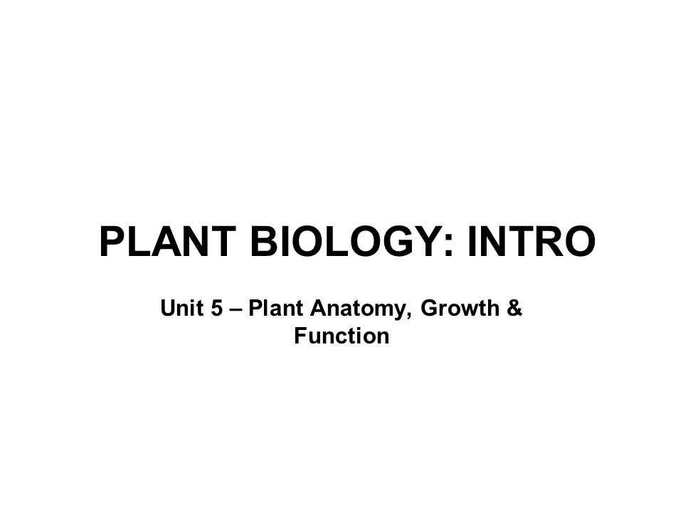 Unit 5 – Plant Anatomy, Growth & Function
