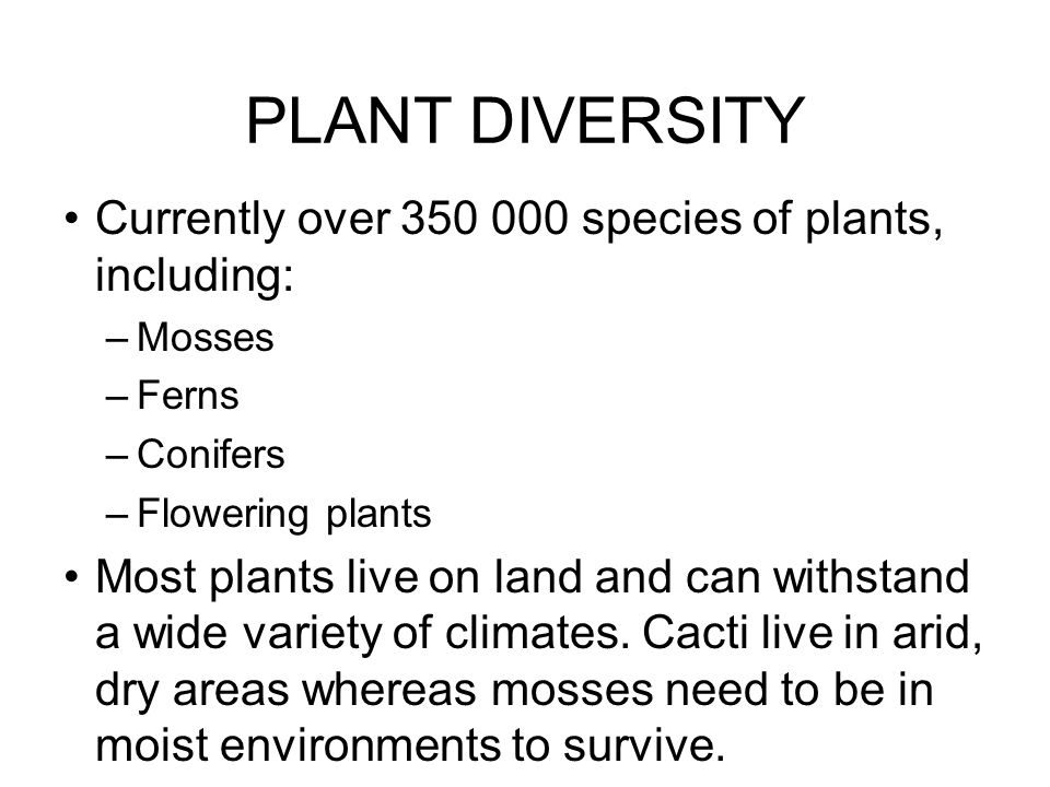 PLANT DIVERSITY Currently over 350 000 species of plants, including:
