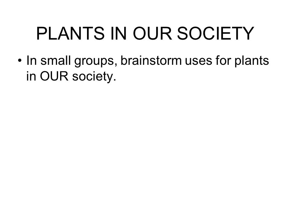 PLANTS IN OUR SOCIETY In small groups, brainstorm uses for plants in OUR society.
