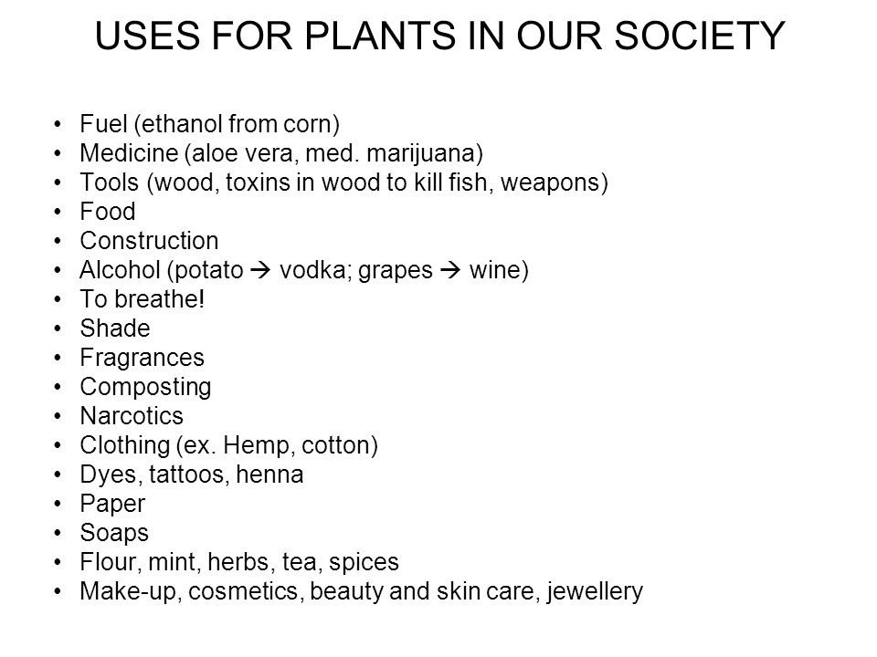 USES FOR PLANTS IN OUR SOCIETY