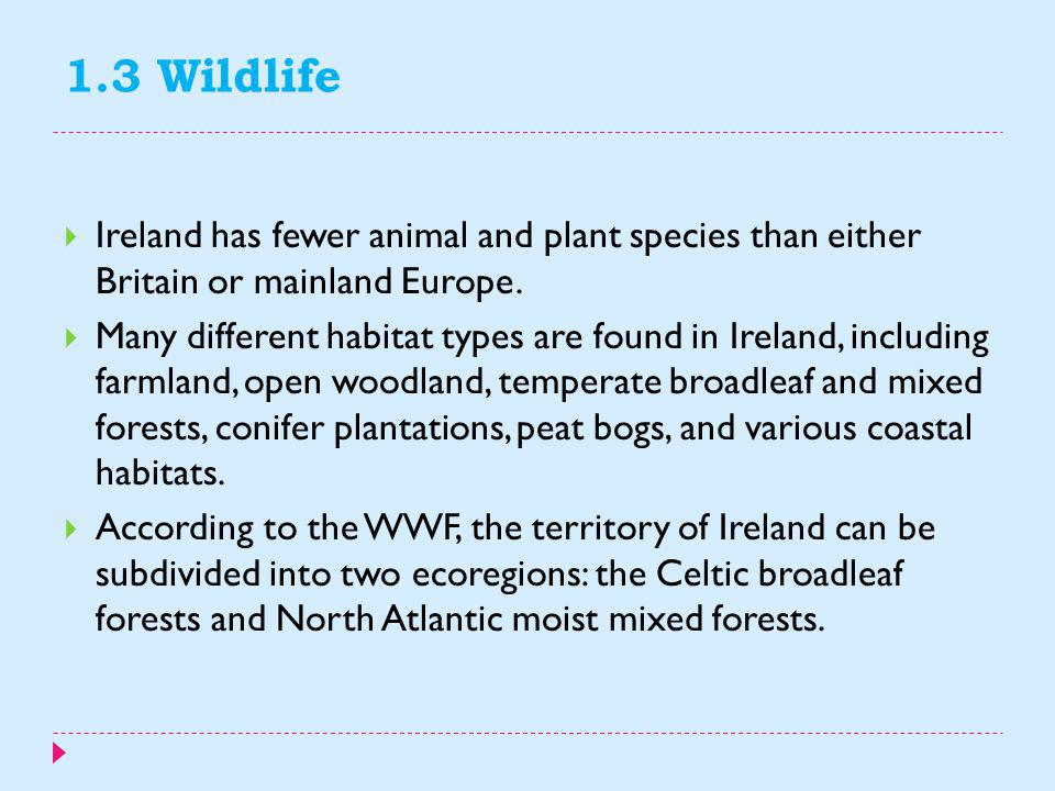 1.3 Wildlife Ireland has fewer animal and plant species than either Britain or mainland Europe.