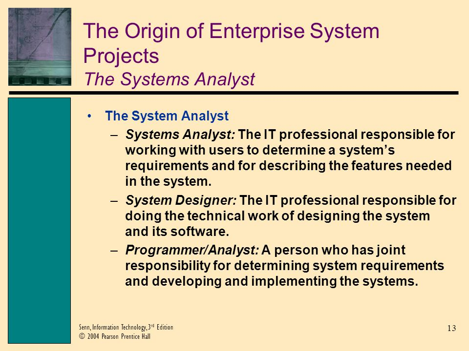 The Origin of Enterprise System Projects The Systems Analyst