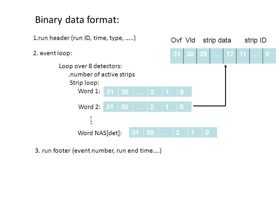 Binary data format: 1.run header (run ID, time, type, …..)