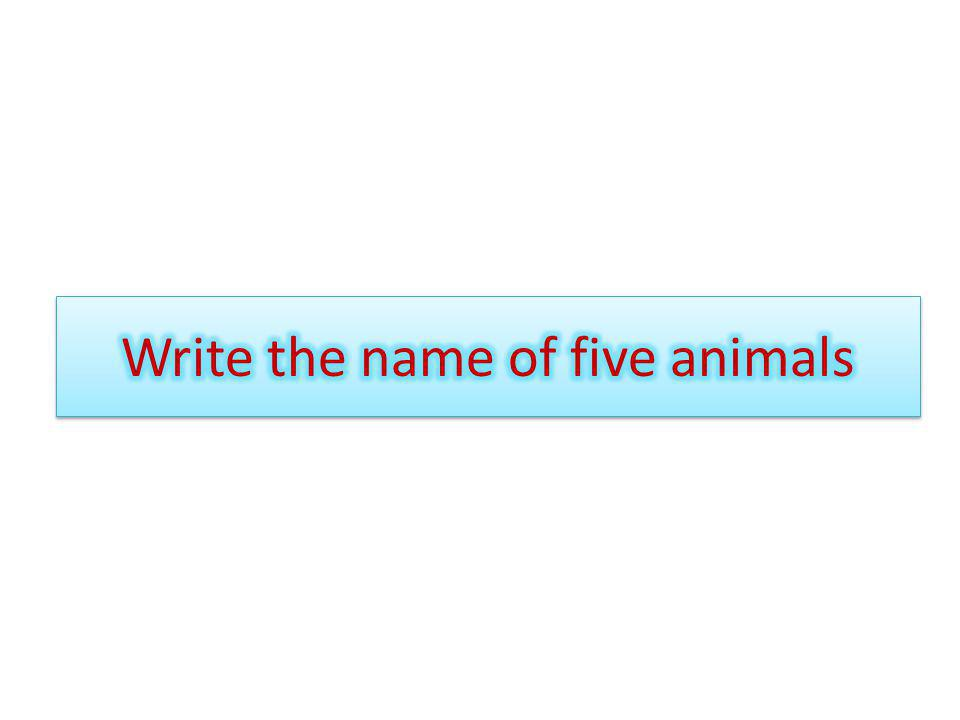 Write the name of five animals
