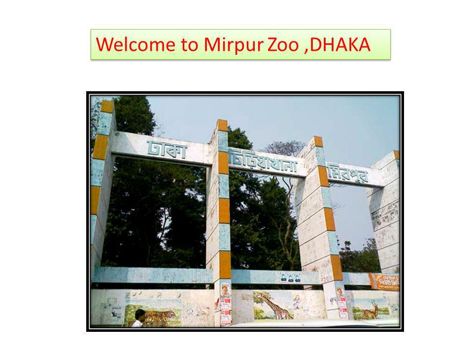 Welcome to Mirpur Zoo ,DHAKA