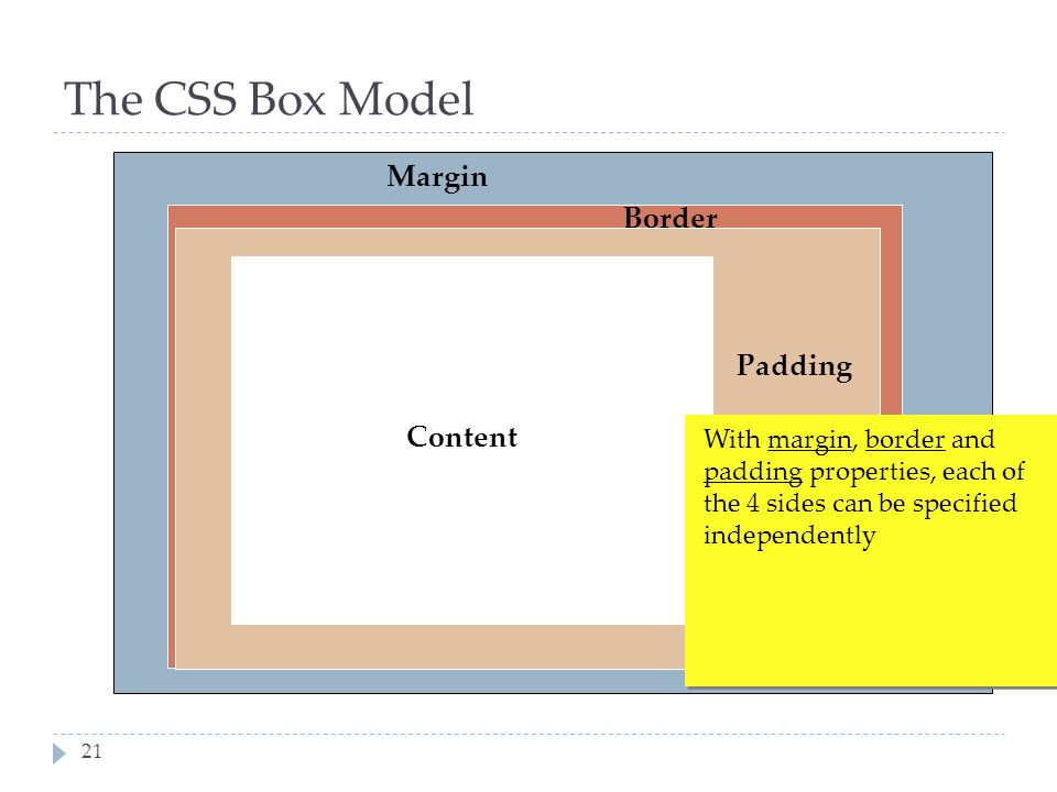 The CSS Box Model Margin Border Padding Content