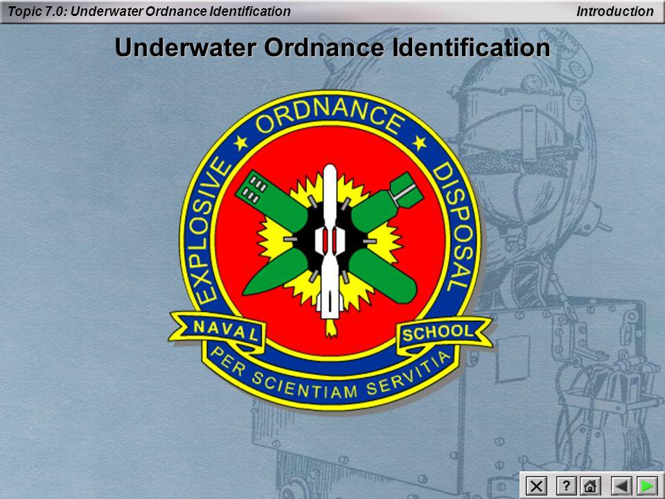 Underwater Ordnance Identification