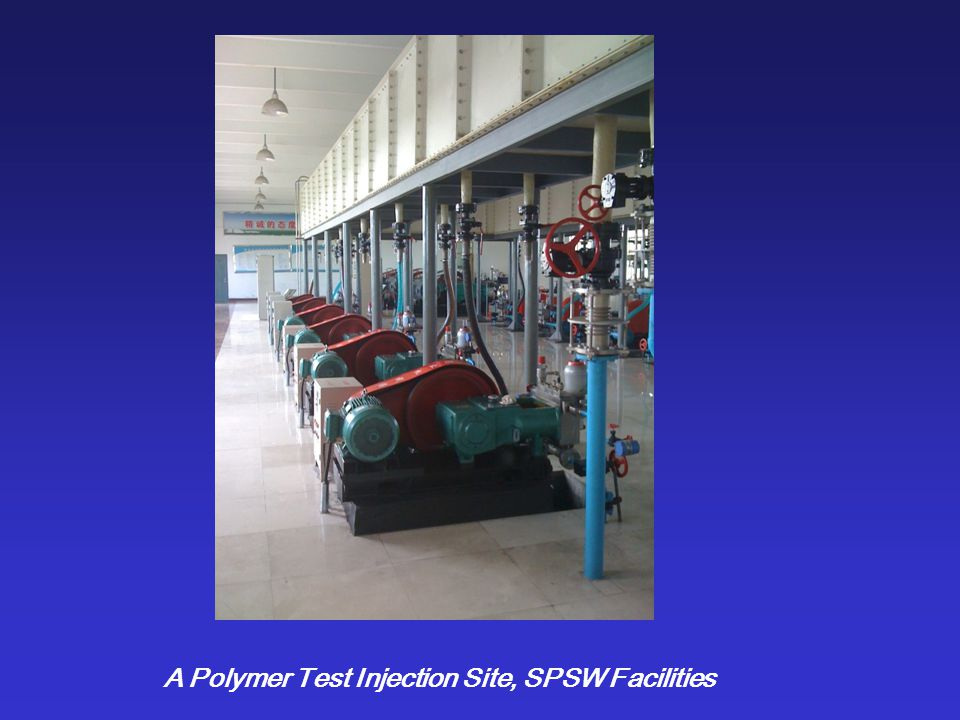 SPMW Polymer injection pumps