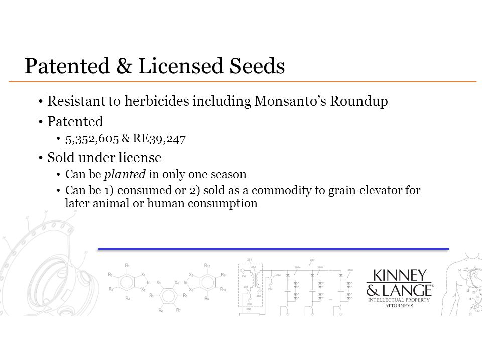 Patented & Licensed Seeds