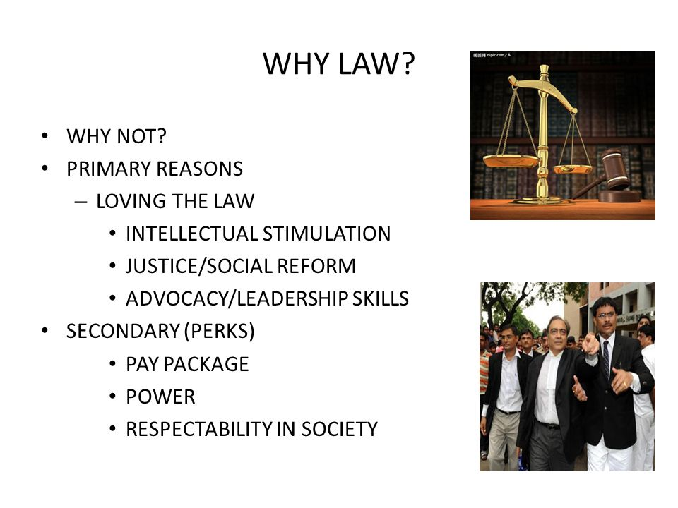 WHY LAW WHY NOT PRIMARY REASONS LOVING THE LAW
