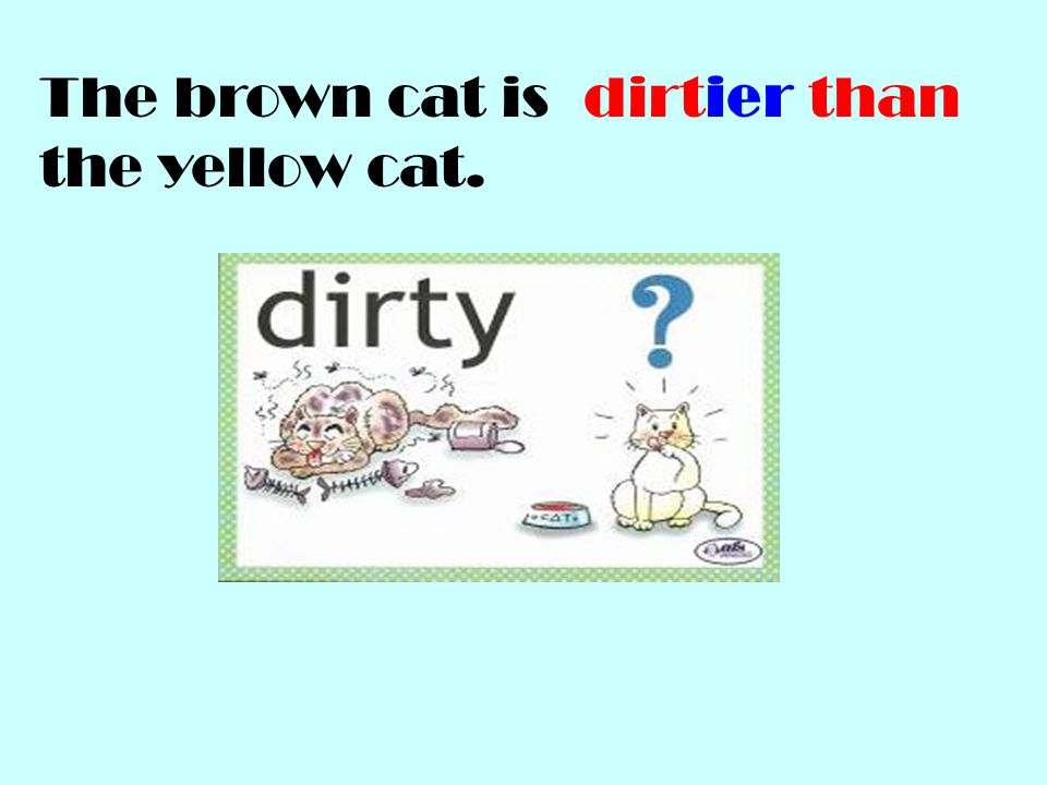 The brown cat is the yellow cat.