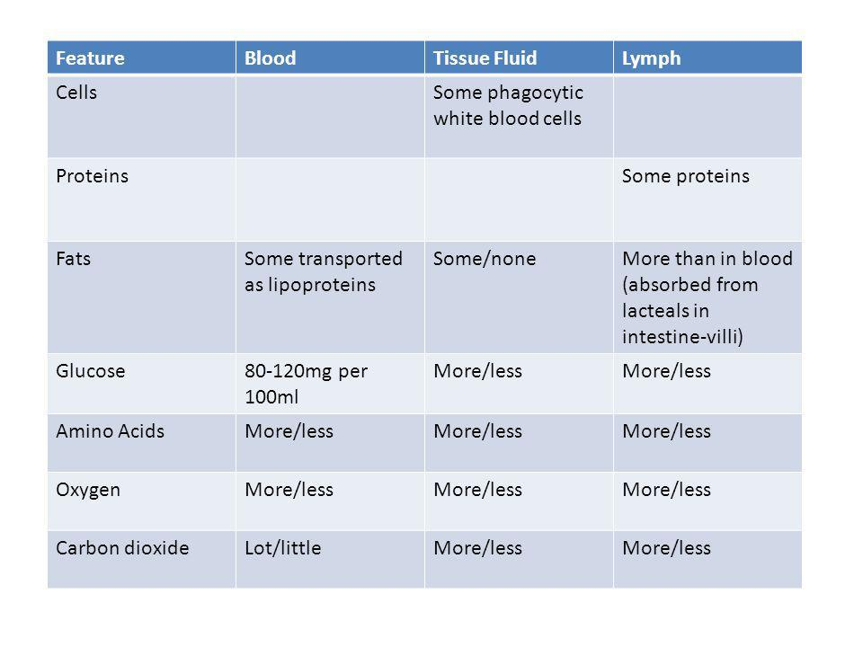 Feature Blood. Tissue Fluid. Lymph. Cells. Some phagocytic white blood cells. Proteins. Some proteins.